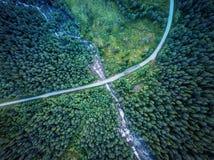 Δάσος της Νορβηγίας Στοκ φωτογραφίες με δικαίωμα ελεύθερης χρήσης