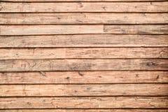 δάσος τοίχων σύστασης ανασκόπησης Στοκ Φωτογραφίες