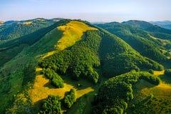 Δάσος του Μαυροβουνίου - κεραία στοκ φωτογραφία με δικαίωμα ελεύθερης χρήσης