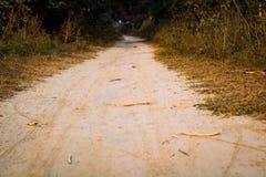 Δάσος του χωριού δρόμων στοκ φωτογραφία με δικαίωμα ελεύθερης χρήσης
