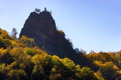Δάσος φθινοπώρου, πολλά δέντρα στο βουνό στοκ φωτογραφία
