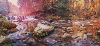 Δάσος φθινοπώρου, ρεύμα βουνών Όμορφο δάσος φθινοπώρου, βράχοι Στοκ Φωτογραφίες