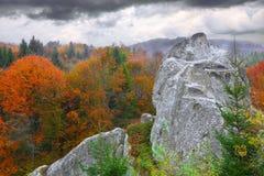 Δάσος φθινοπώρου στα βουνά Στοκ Εικόνες