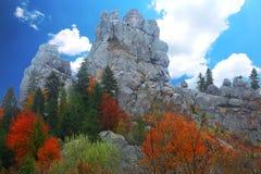 Δάσος φθινοπώρου στα βουνά Στοκ Φωτογραφία