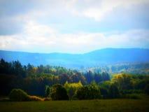 Δάσος φθινοπώρου στη δυτική Βοημία Στοκ Φωτογραφίες