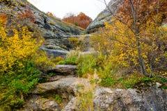 Δάσος 16 φθινοπώρου Στοκ φωτογραφία με δικαίωμα ελεύθερης χρήσης