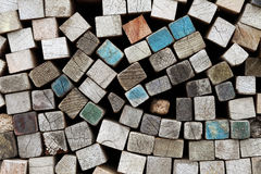 δάσος χαρτονιών Στοκ Φωτογραφίες