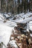 Δάσος χειμερινών βουνών με το χιόνι και μικρός ποταμός στα βουνά Beskids Στοκ εικόνα με δικαίωμα ελεύθερης χρήσης