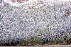 Δάσος χειμερινών βουνών του Αϊντάχο με τη λίμνη Στοκ Εικόνες