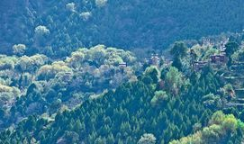 Δάσος Danba, Sichuan 6 Στοκ Φωτογραφία