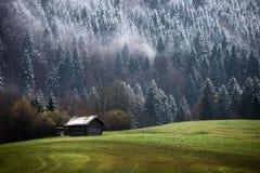 Δάσος Geroldsee κατά τη διάρκεια της ημέρας φθινοπώρου με το πρώτες χιόνι και την ομίχλη πέρα από τα δέντρα, βαυαρικές Άλπεις, Βα στοκ φωτογραφία με δικαίωμα ελεύθερης χρήσης