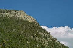 Δάσος mountainside στοκ φωτογραφίες
