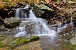 Δάσος Vallombrosa, καταρράκτης 4 Στοκ εικόνες με δικαίωμα ελεύθερης χρήσης