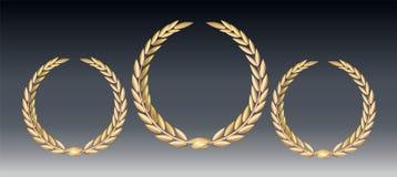 Δάφνη βραβείων που απομονώνεται σε ένα διαφανές υπόβαθρο Πρότυπο νικητών Σύμβολο της νίκης και του επιτεύγματος όμορφο χρυσό διάν ελεύθερη απεικόνιση δικαιώματος
