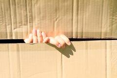 Δάχτυλα παιδιών στο κιβώτιο στοκ φωτογραφίες