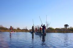 Δέλτα Okavango Στοκ Φωτογραφία