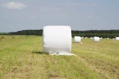 Δέμα του σανού που τυλίγεται στο πλαστικό Στοκ Φωτογραφίες