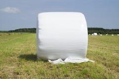 Δέμα του σανού που τυλίγεται στο πλαστικό Στοκ εικόνες με δικαίωμα ελεύθερης χρήσης