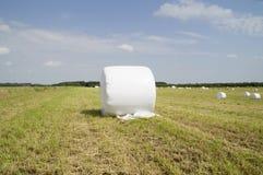 Δέμα του σανού που τυλίγεται στο πλαστικό Στοκ Εικόνες