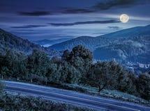 Δέντρα από μια πλευρά λόφων κοντά στο δρόμο βουνών τη νύχτα Στοκ Εικόνες