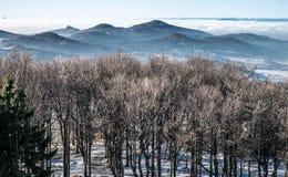 Δέντρα, βουνά και σύννεφα σε ένα χειμερινό τοπίο Στοκ Εικόνες