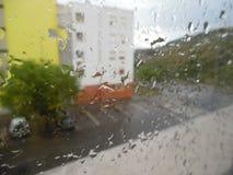 Δέντρα, βροχή, σπίτι; Στοκ Εικόνες