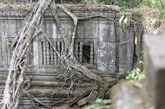 Δέντρα γύρω από το ναό Beng Mealea, Καμπότζη Στοκ Φωτογραφίες