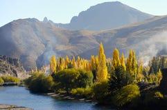 Δέντρα λευκών - Παταγωνία - Αργεντινή Στοκ φωτογραφία με δικαίωμα ελεύθερης χρήσης