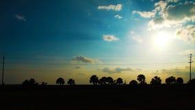 δέντρα ηλιοβασιλέματος σκιαγραφιών τοπίου φοινικών Στοκ Εικόνα