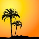 δέντρα ηλιοβασιλέματος &ph απεικόνιση αποθεμάτων