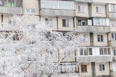 Δέντρα κάτω από ένα παχύ στρώμα του χιονιού στο υπόβαθρο του πολυόροφου κτιρίου στοκ φωτογραφία με δικαίωμα ελεύθερης χρήσης