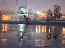 Δέντρα καθρεφτών Στοκ εικόνα με δικαίωμα ελεύθερης χρήσης