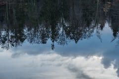 Δέντρα και αντανακλάσεις σύννεφων Στοκ φωτογραφίες με δικαίωμα ελεύθερης χρήσης