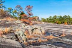 Δέντρα και αλεσμένος με πέτρα στο πέτρινο πάρκο βουνών, Γεωργία, ΗΠΑ Στοκ Φωτογραφία