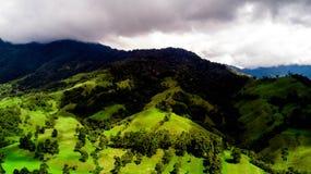 Δέντρα και ημέρες βουνών στον πόλης μπλε ουρανό στοκ φωτογραφίες με δικαίωμα ελεύθερης χρήσης