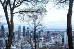 Δέντρα και μπλε ουρανός και πόλη του Μόντρεαλ Στοκ φωτογραφίες με δικαίωμα ελεύθερης χρήσης