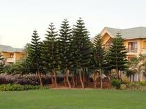 Δέντρα και οικοδόμηση στοκ φωτογραφία με δικαίωμα ελεύθερης χρήσης