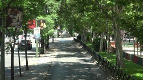 Δέντρα και πάροδος πόλεων απόθεμα βίντεο