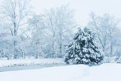 Δέντρα και δέντρα πεύκων με έναν παγωμένο ποταμό κάτω από το χιόνι Στοκ εικόνες με δικαίωμα ελεύθερης χρήσης
