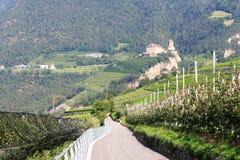 Δέντρα και Τύρολο Castle της Apple στο Tirol, νότιο Τύρολο Στοκ Φωτογραφίες
