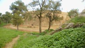 Δέντρα και χλόη που αυξάνονται στη βαθιά τάφρο του αρχαίου φρουρίου Famagusta με τους υψηλούς τοίχους απόθεμα βίντεο