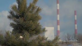 Δέντρα κοντά στο εργοστάσιο απόθεμα βίντεο