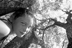 δέντρα κοριτσιών κάτω από τις νεολαίες στοκ φωτογραφίες με δικαίωμα ελεύθερης χρήσης