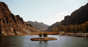δέντρα λιμνών ζευγών Στοκ φωτογραφία με δικαίωμα ελεύθερης χρήσης