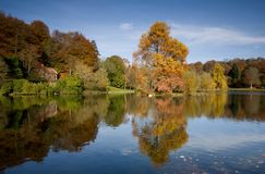 δέντρα λιμνών φθινοπώρου στοκ εικόνες