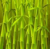 δέντρα μπαμπού διανυσματική απεικόνιση