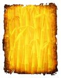 δέντρα μπαμπού απεικόνιση αποθεμάτων