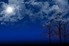δέντρα νύχτας Στοκ φωτογραφίες με δικαίωμα ελεύθερης χρήσης