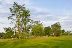 δέντρα ουρανού χλόης Στοκ εικόνα με δικαίωμα ελεύθερης χρήσης