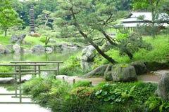 Δέντρα πεύκων, μονοπάτι, γέφυρα, κτήριο περίπτερων στον κήπο zen Στοκ Εικόνες